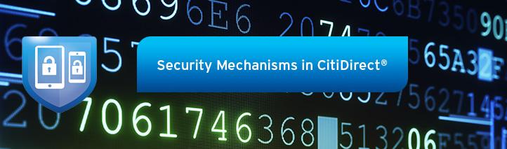 Citibank Secure Login >> Bank Handlowy w Warszawie S.A. | Citidirect - Security